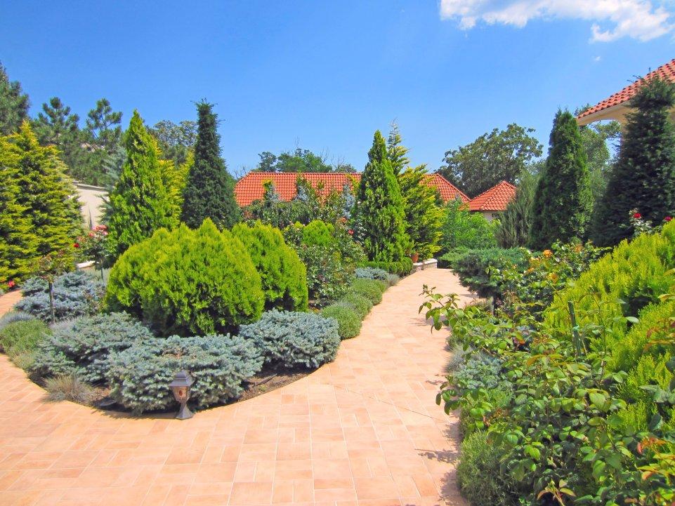 Сад с капельным поливом